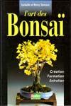 Chrysanthème bonsaï Samson